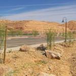 Sun City  Mesquite
